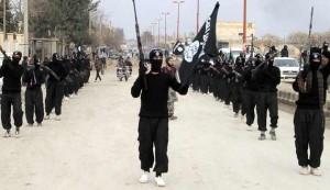 ISIS display